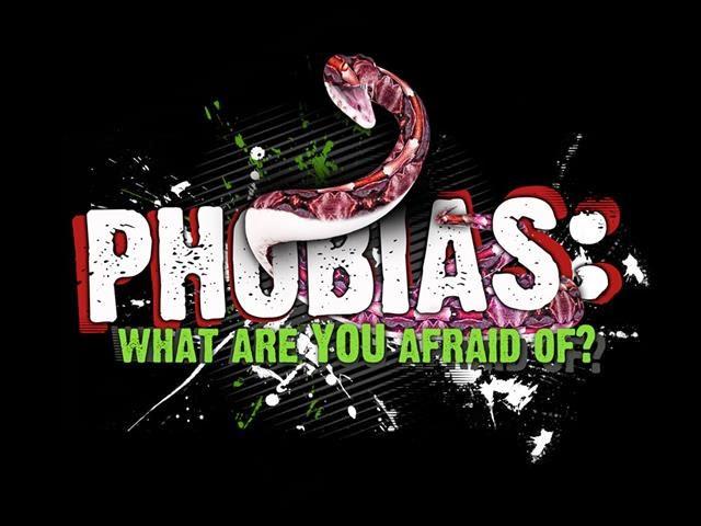 Apa Itu Phobia