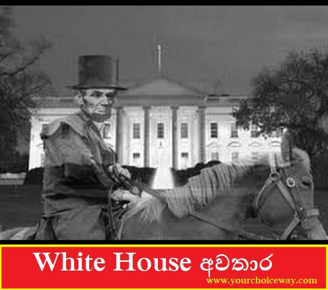 White House අවතාර - Your Choice Way