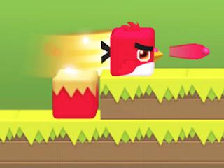 square-bird