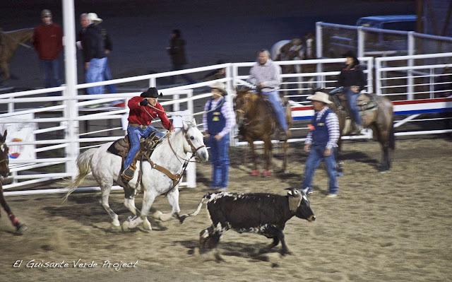 Cody Nite Rodeo - Cody, Wyoming