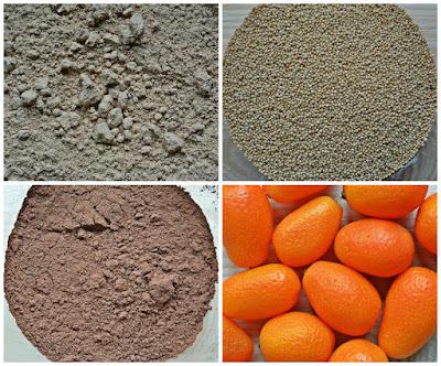 Świąteczny czekoladowiec z kumkwatami - składniki
