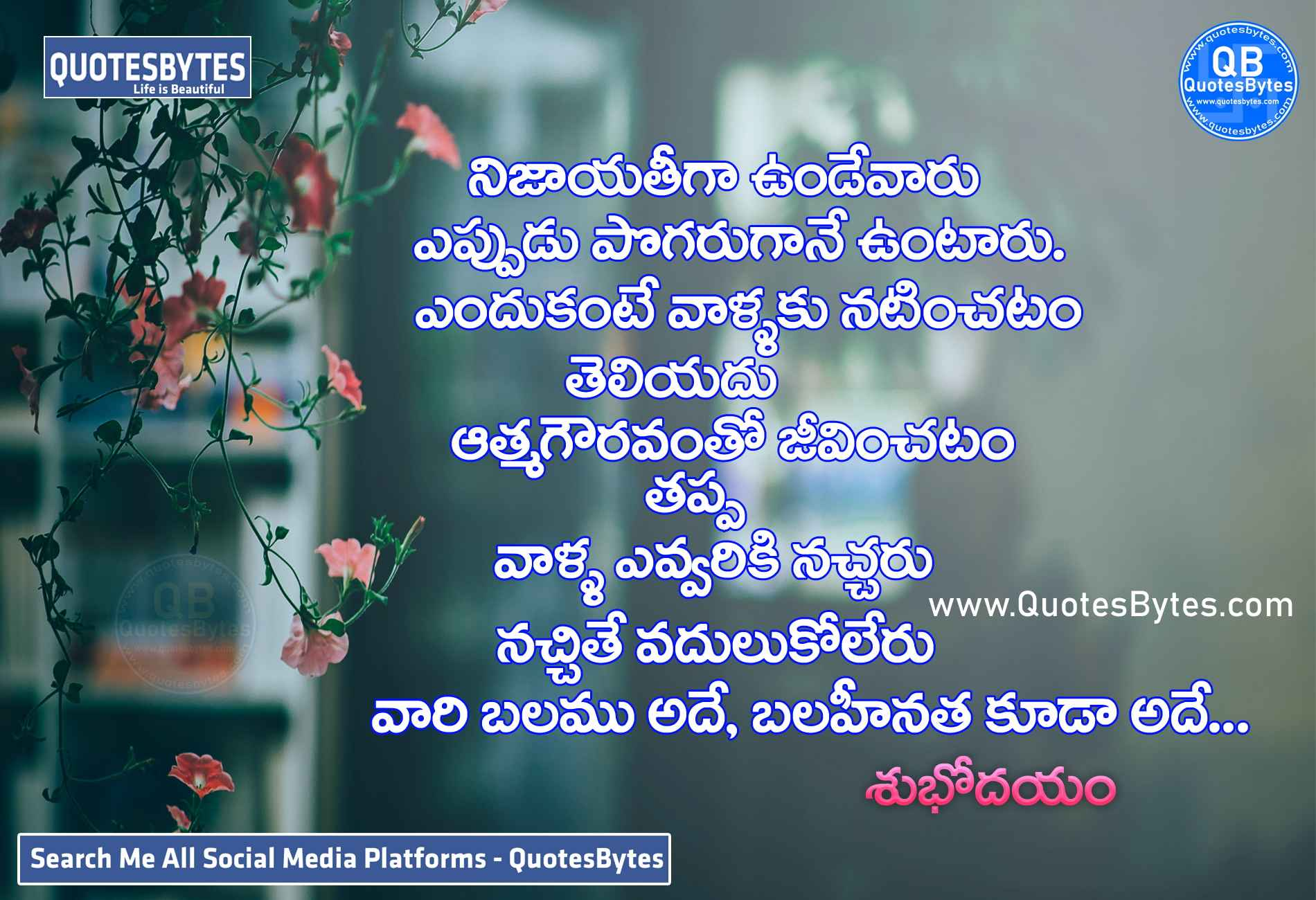 good morning images in telugu-good morning quotes in Telugu with images