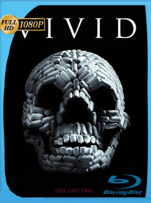 VIViD (2011) HD [1080P] latino [GoogleDrive] DizonHD