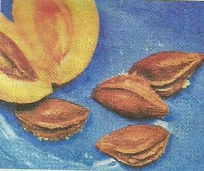 Польза в применении абрикосовых косточек