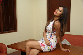 Nishi Ganda stunning cute in Flower Print short dress at Tick Tack Movie Press Meet March 2017 017.JPG