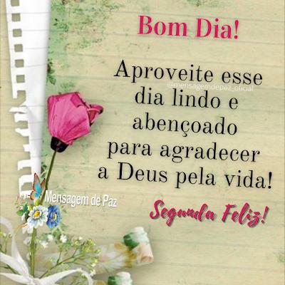 Aproveite esse dia lindo e abençoado para agradecer a Deus pela vida! Segunda Feliz! Bom Dia!