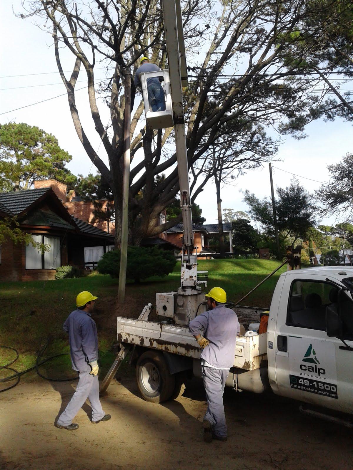 Renovación de tendido eléctrico