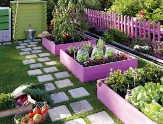 شركة تصميم حدائق منزلية