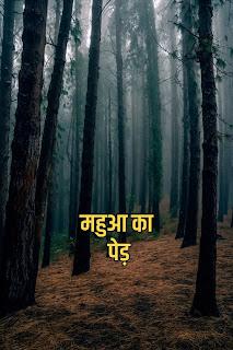 Folk story in Hindi