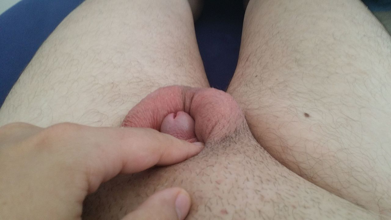 Normal Flaccid Penis Size