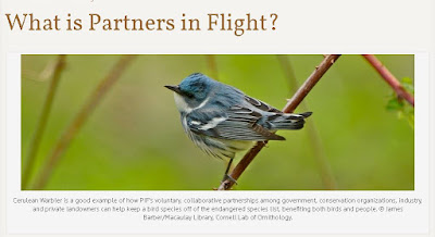 The Future of Birds Learn more about Partners in Flight: