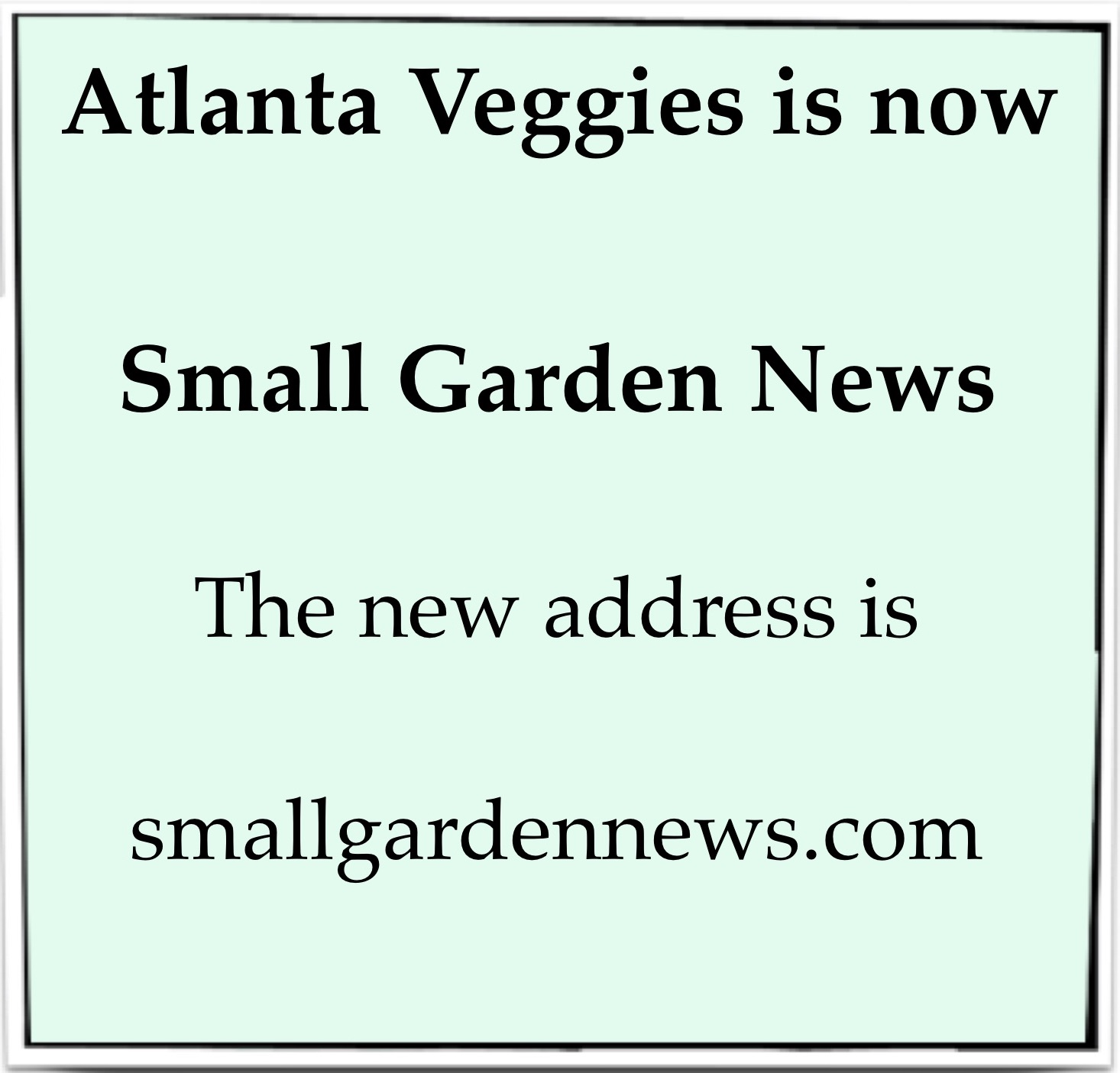 Moving to Small Garden News!