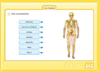 http://www.juntadeandalucia.es/averroes/centros-tic/41009470/helvia/aula/archivos/repositorio/0/194/html/recursos/la/U03/pages/recursos/143315_P35_3/es_carcasa.html