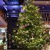 Елха с украса за 14 милиона евро ще радва гостите на петзвезден хотел в Марбея, Испания