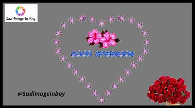 Good Afternoon Images | good afternoon photos, afternoon in hindi, good morning dear images, pictures of good afternoon