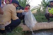 Pemdes Jakem Lepas Lima Ribu Bibit Ikan untuk Memperkuat Ketahanan Pangan.