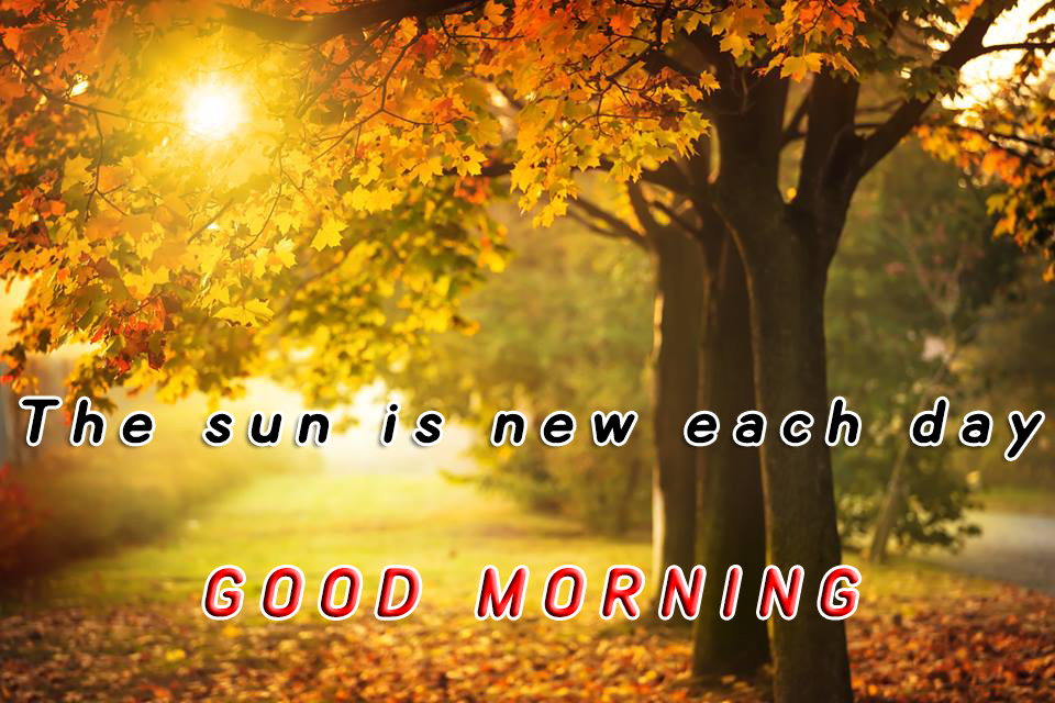 beautiful sunrise good morning photos
