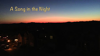 A Song In The Night - Our Daily Bread ODB 27 December 2020