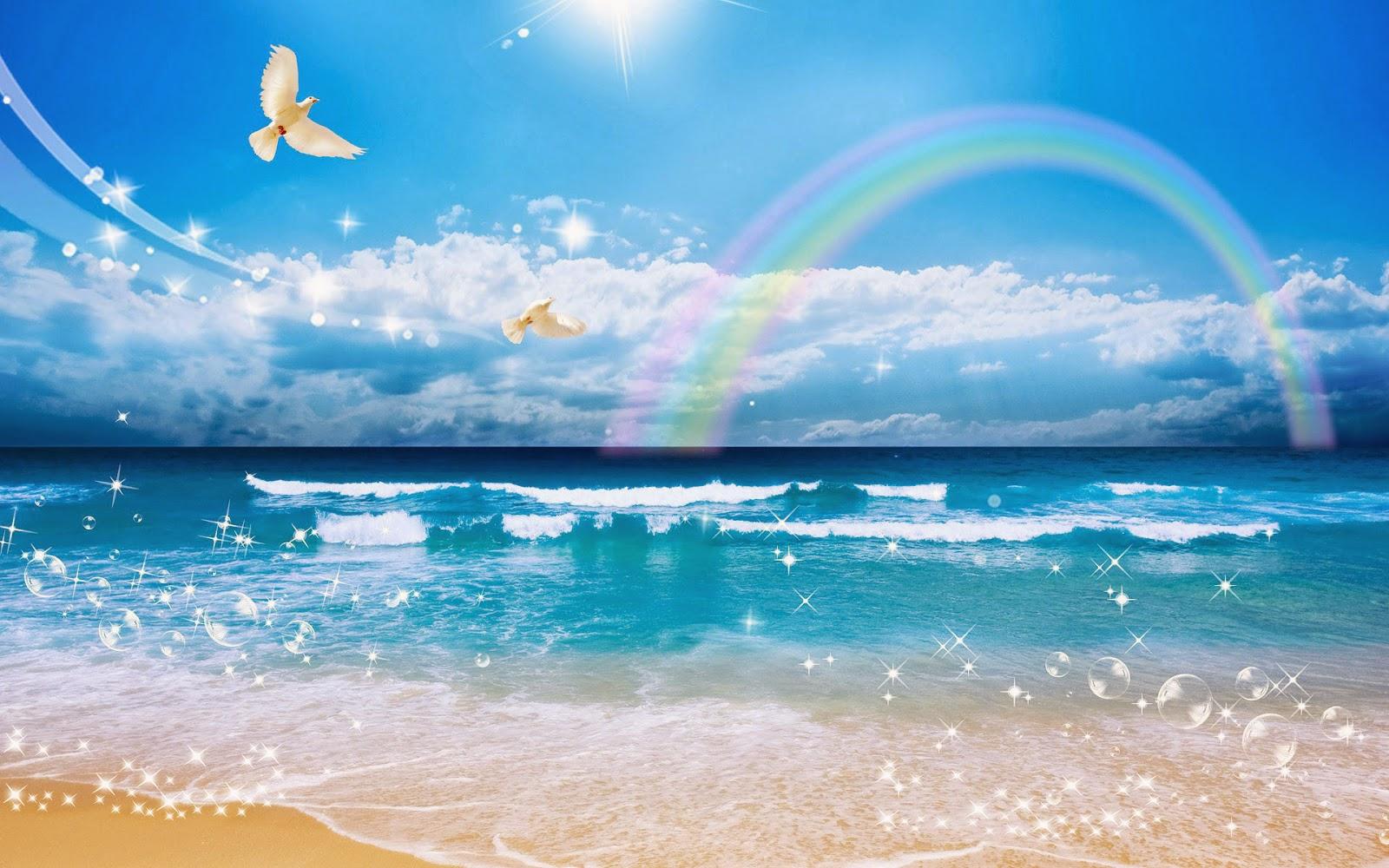 Foto met zee, strand, vogels, regenboog en blauwe lucht