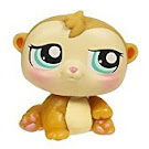 Littlest Pet Shop Petriplets Hamster (#1478) Pet