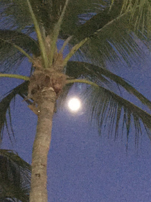 The moon in Key West Florida