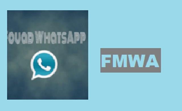 FMWA 8.95 APK.FM