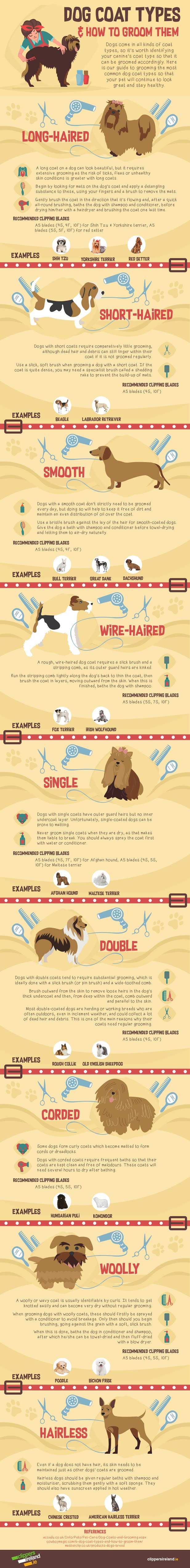 Dog Coat Types & How To Groom Them #infographic #pets & Animal #Dog Coat #Dog Coat Types #Dogs