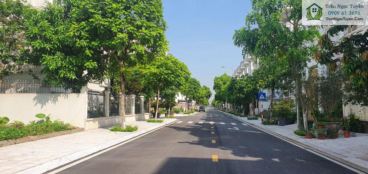 Hạ tầng cây xanh cảnh quan tại Khu đô thị Lideco