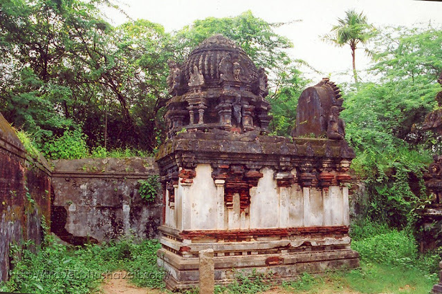 Thiruvarur Kasi Viswanathar Temple
