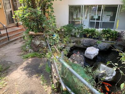 新館浴場と旧館浴場と池