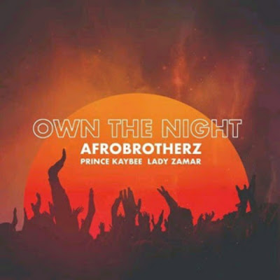 Afro Brotherz Feat. Prince Kaybee & Lady Zamar - Own The Night (Afro House) 2019