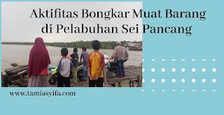 Aktifitas bongkar muat barang di pelabuhan Sei Pancang