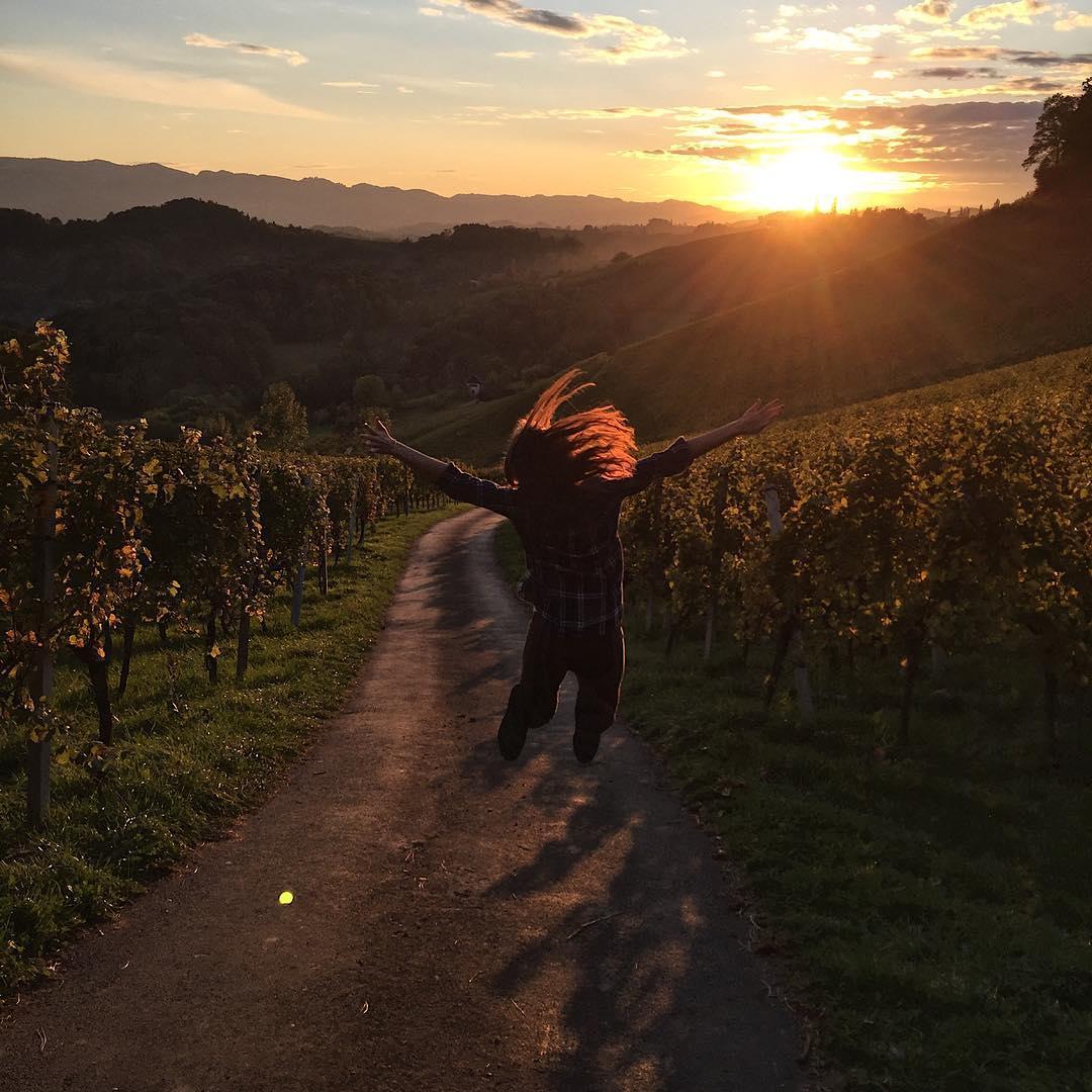 szlak winnic Austria, winnice z Austrii, podróże blog podróżniczy