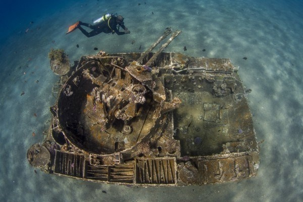 The Best Underwater Photos EVER Taken Show Life From A Different Angle. - 'The Tank' by Saeed Rashid (United Kingdom)