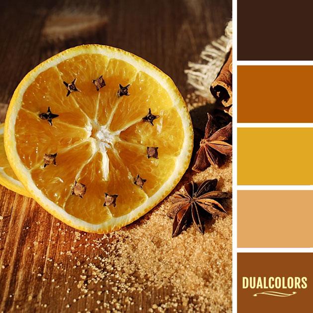 color_paleta_24