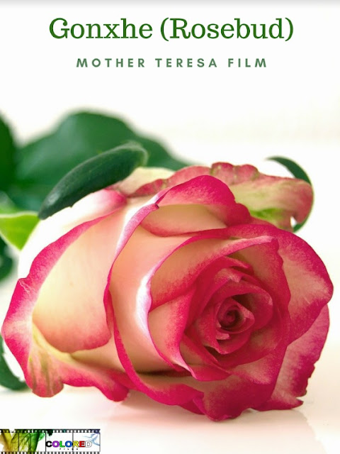 """From Childhood to Sainthood """"Gonxhe - Mother Teresa Project"""": A new film at her upbringing produced by Colored Films"""