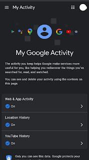 History Google - Web App Activity