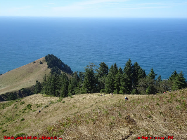 Cascade Head Preserve Oregon