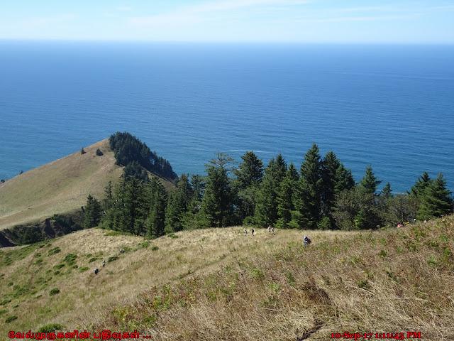 Cascade Head Preserve Oregon