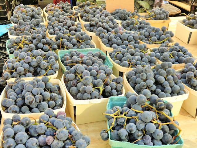 Green market - Union Square - New-York - fruits - grapes