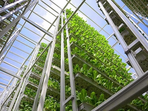 00-Sky-Greens-Vertical-Farms-for-a-new-Agricultural-Revolution-www-designstack-co