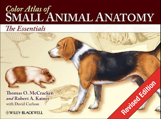 Color Atlas of Small Animal Anatomy: The Essentials 1st Edition