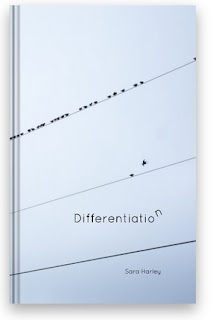 Differentiation by Sara Harley