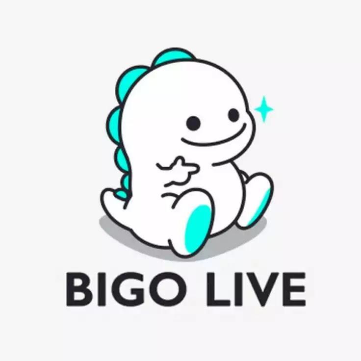 Tiktok similar apps bigo live