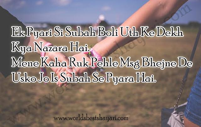 Beautiful Friendship Shayari