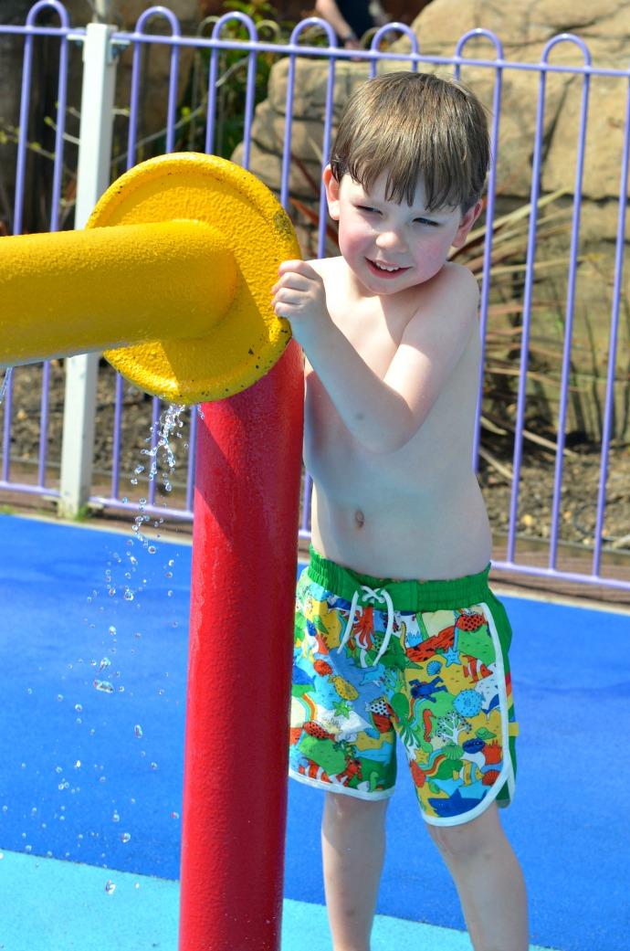 little bird swim shorts, paulton's park, the lost kingdom