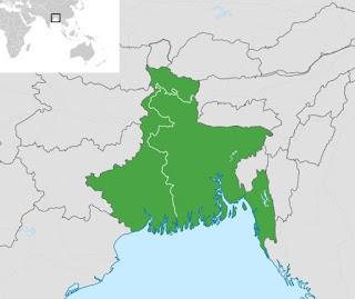 Bengali Culture of Violence Gluttony Biswa Bangla