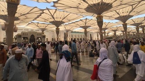 Percaya Tawaran Orang, Bapak Ini Kehilangan Rp 13 Juta di Masjid Nabawi