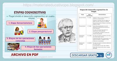 Piaget y las etapas del desarrollo cognitivo