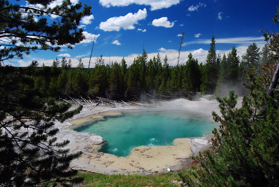 Emerald Spring Yellowstone